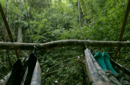 Paljalt võrkkiikega vihmametsa sügavustes
