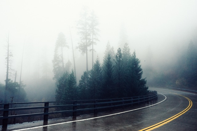 road-fog-bend-foggy