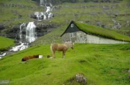 Millise hinnaga osta lennupiletid Fääri saartele?